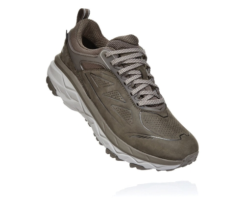 MAJOR BROWN/HEATHER CHALLENGER ATR GORE-TEX