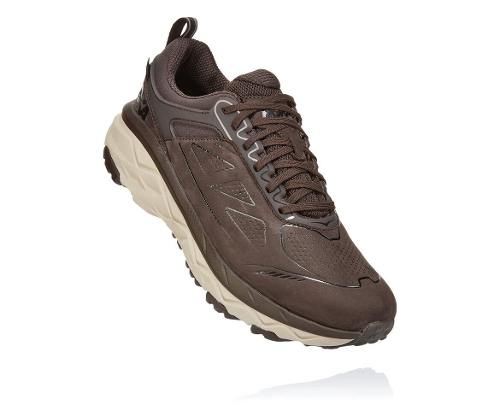 DEMITASSE CHALLENGER LOW GORE-TEX WIDE